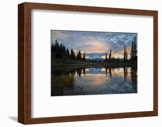 Washington, Mt. Rainier National Park-Gary Luhm-Framed Photographic Print