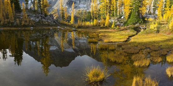 Washington, Mt. Stuart Reflects in a Tarn Near Horseshoe Lake, Alpine Lakes Wilderness. Panorama-Gary Luhm-Photographic Print