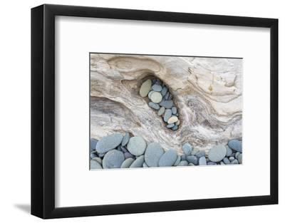 Washington, Olympic National Park. Beach Wood and Pebbles-Jaynes Gallery-Framed Photographic Print