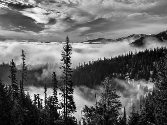 Washington, Olympic National Park. View Northeast from Road to Hurricane Ridge-Ann Collins-Photographic Print