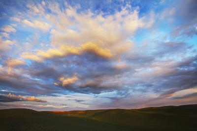 Washington, Palouse County, Rolling Hills of Green Spring Wheat and Evening Bright Clouds-Terry Eggers-Photographic Print