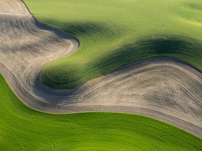 Washington, Palouse, Whitman County. Aerial of Palouse Region-Julie Eggers-Photographic Print