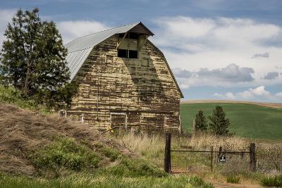 Washington State, Palouse, Whitman County-Alison Jones-Photographic Print
