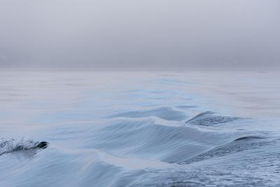 Washington State, Puget Sound Wake Patterns on Calm Water Reflecting Moody Light. Dense Fog-Trish Drury-Photographic Print