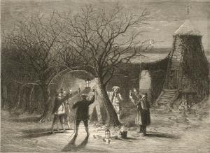 Wassailing Apple Trees with Hot Cider in Devonshire on Twelfth Night