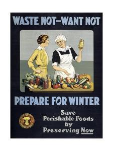 Waste Not - Want Not, Prepare for Winter Poster