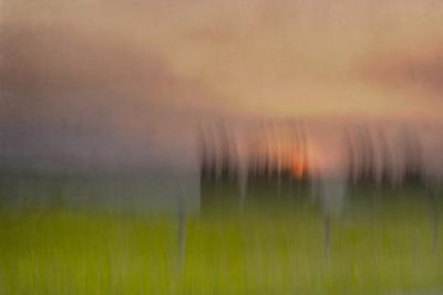 Wasted Days-Roberta Murray-Photographic Print