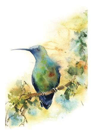 https://imgc.artprintimages.com/img/print/watchful_u-l-f92vmc0.jpg?p=0