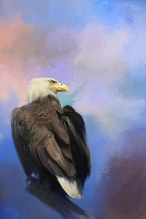 https://imgc.artprintimages.com/img/print/watching-over-the-heavens_u-l-q12ubrr0.jpg?p=0