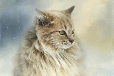 Watching Snow Fall-Jai Johnson-Giclee Print
