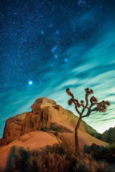 Watching The Stars Dance In Joshua Tree National Park-Daniel Kuras-Photographic Print