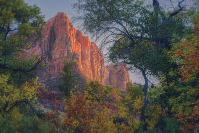 https://imgc.artprintimages.com/img/print/watchman-and-fall-frame-zion-southwest-utah_u-l-pt66iu0.jpg?p=0