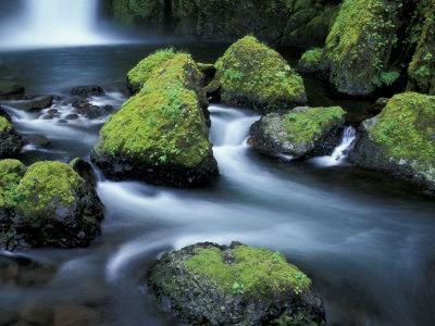 Water Below Wahclella Falls, Columbia River Gorge National Scenic Area, Oregon, USA-Adam Jones-Photographic Print