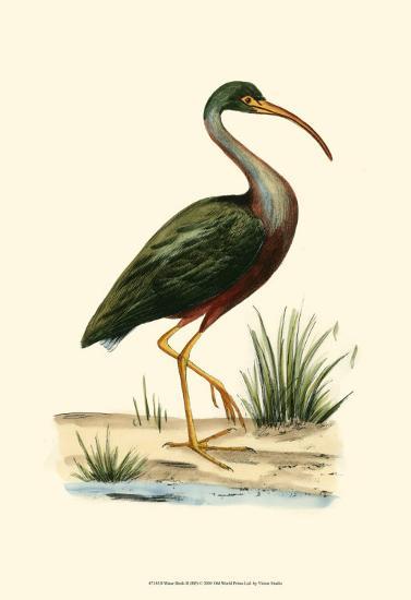 Water Birds II--Art Print