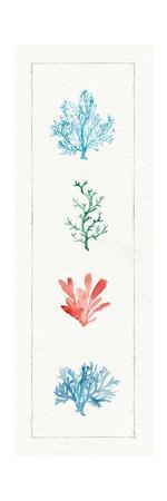 https://imgc.artprintimages.com/img/print/water-coral-viii_u-l-q1b1a840.jpg?p=0