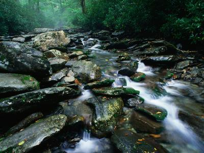 Water Flowing over Rocks in Alum Creek, Great Smoky Mountains National Park, Tennessee-John Elk III-Photographic Print