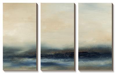 Water II-Sharon Gordon-Canvas Art Set