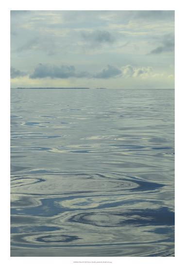 Water II-Sharon Chandler-Art Print