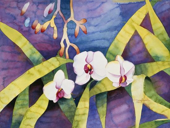 Water Orchids-Mary Russel-Giclee Print