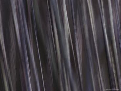 Water Pattern, Time Exposure-Mattias Klum-Photographic Print