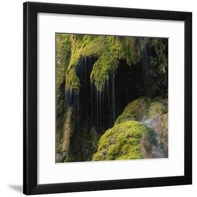 Water Running down Vegetation Covered Rocks-Micha Pawlitzki-Framed Photographic Print