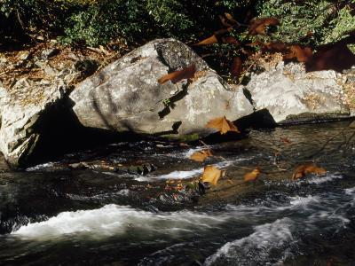 Water Rushing Past Boulders Along the Banks of the Nantahala River-Raymond Gehman-Photographic Print