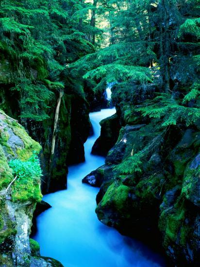 Water Rushing through Avalanche Creek Gorge, Glacier National Park, Montana-Holger Leue-Photographic Print