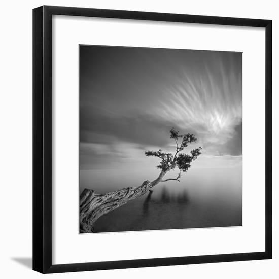 Water Tree 3-Moises Levy-Framed Photographic Print