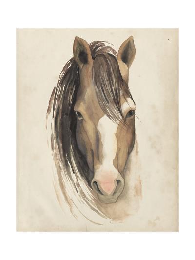Watercolor Animal Study V-Grace Popp-Art Print
