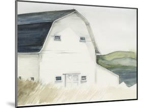 Watercolor Barn IV-Jennifer Paxton Parker-Mounted Art Print