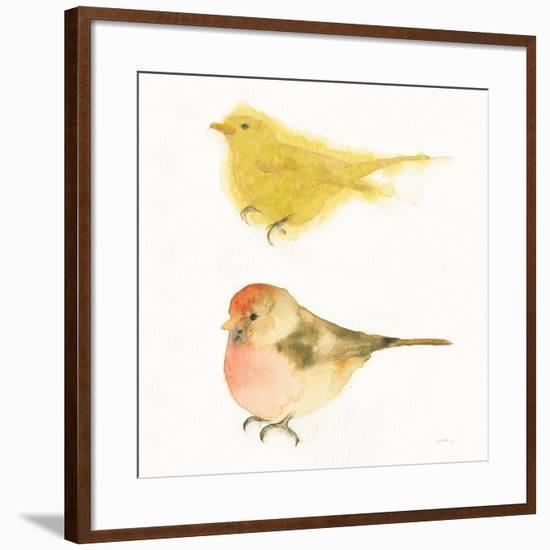 Watercolor Birds I Sq-Shirley Novak-Framed Art Print