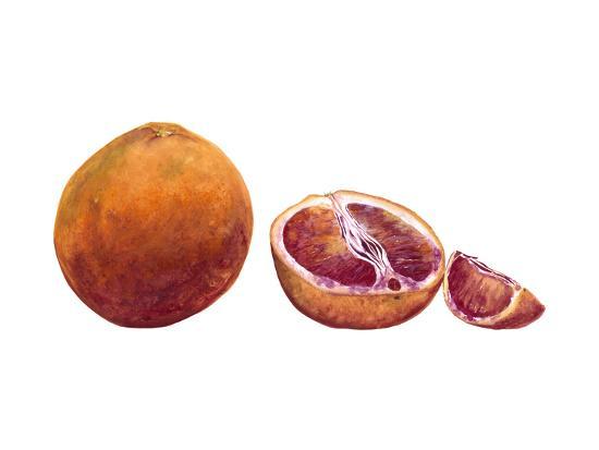 Watercolor Blood Orange-Michael Willett-Art Print