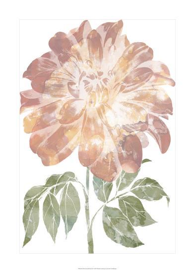 Watercolor Bloom II-Jennifer Goldberger-Premium Giclee Print