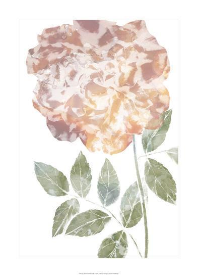 Watercolor Bloom III-Jennifer Goldberger-Premium Giclee Print