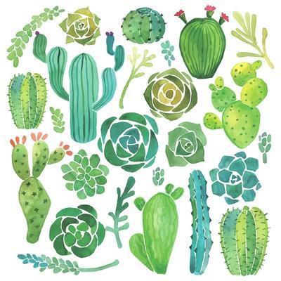 https://imgc.artprintimages.com/img/print/watercolor-cactus-and-succulent-set_u-l-pwhja40.jpg?p=0