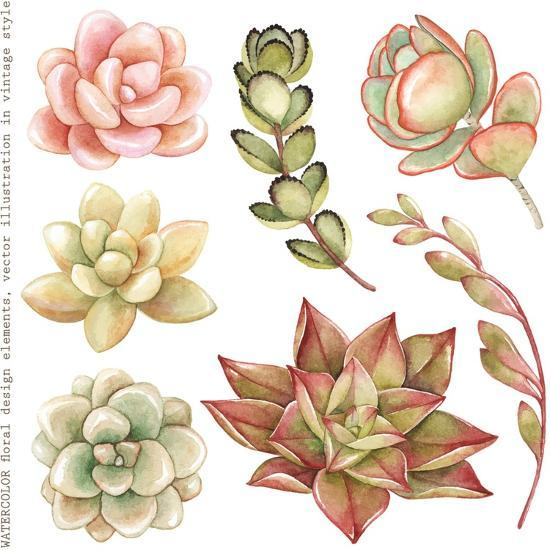 Watercolor Collection of Succulents and Kalanchoe for Your Design, Hand-Drawn Illustration.-Nikiparonak-Art Print