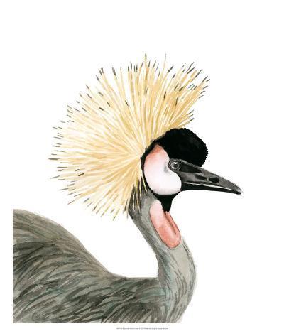 Watercolor Crested Crane-Naomi McCavitt-Giclee Print