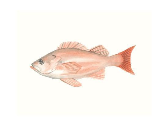 Watercolor Deep Sea Fish I-Naomi McCavitt-Art Print
