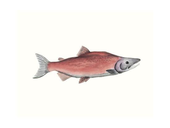 Watercolor Deep Sea Fish III-Naomi McCavitt-Art Print