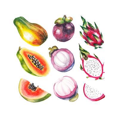 Watercolor Exotic Fruits Set-lenavetka87-Art Print