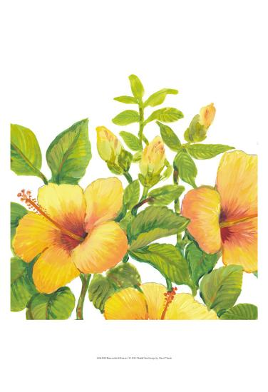 Watercolor Hibiscus I-Tim OToole-Art Print