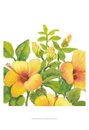https://imgc.artprintimages.com/img/print/watercolor-hibiscus-i_u-l-f8hs2m0.jpg?p=0
