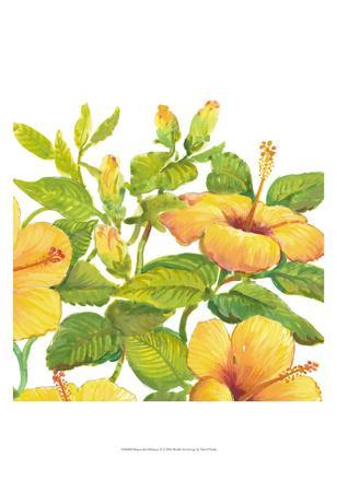 https://imgc.artprintimages.com/img/print/watercolor-hibiscus-ii_u-l-f8hs2n0.jpg?p=0