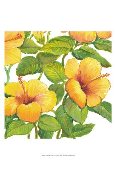 Watercolor Hibiscus IV-Tim OToole-Art Print