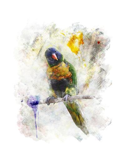 Watercolor Image of Parrot (Rainbow Lorikeet)-SunnyS-Art Print