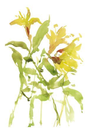 https://imgc.artprintimages.com/img/print/watercolor-lilies-i_u-l-q1ap1nz0.jpg?p=0