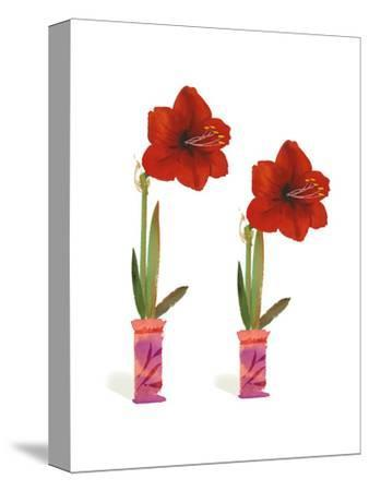 Watercolor of Two Amaryllis Plants in Vases