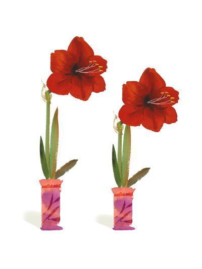 Watercolor of Two Amaryllis Plants in Vases--Art Print