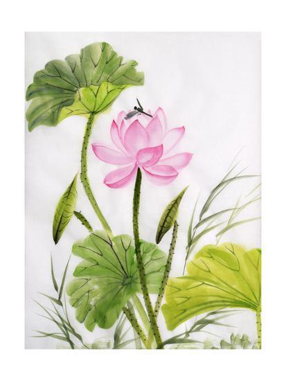 Watercolor Painting Of Lotus Flower Art Print By Surovtseva Artcom