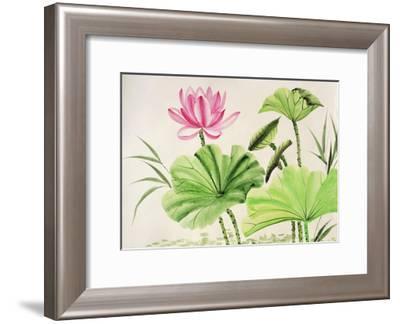 Watercolor Painting Of Pink Lotus Flower-Surovtseva-Framed Art Print